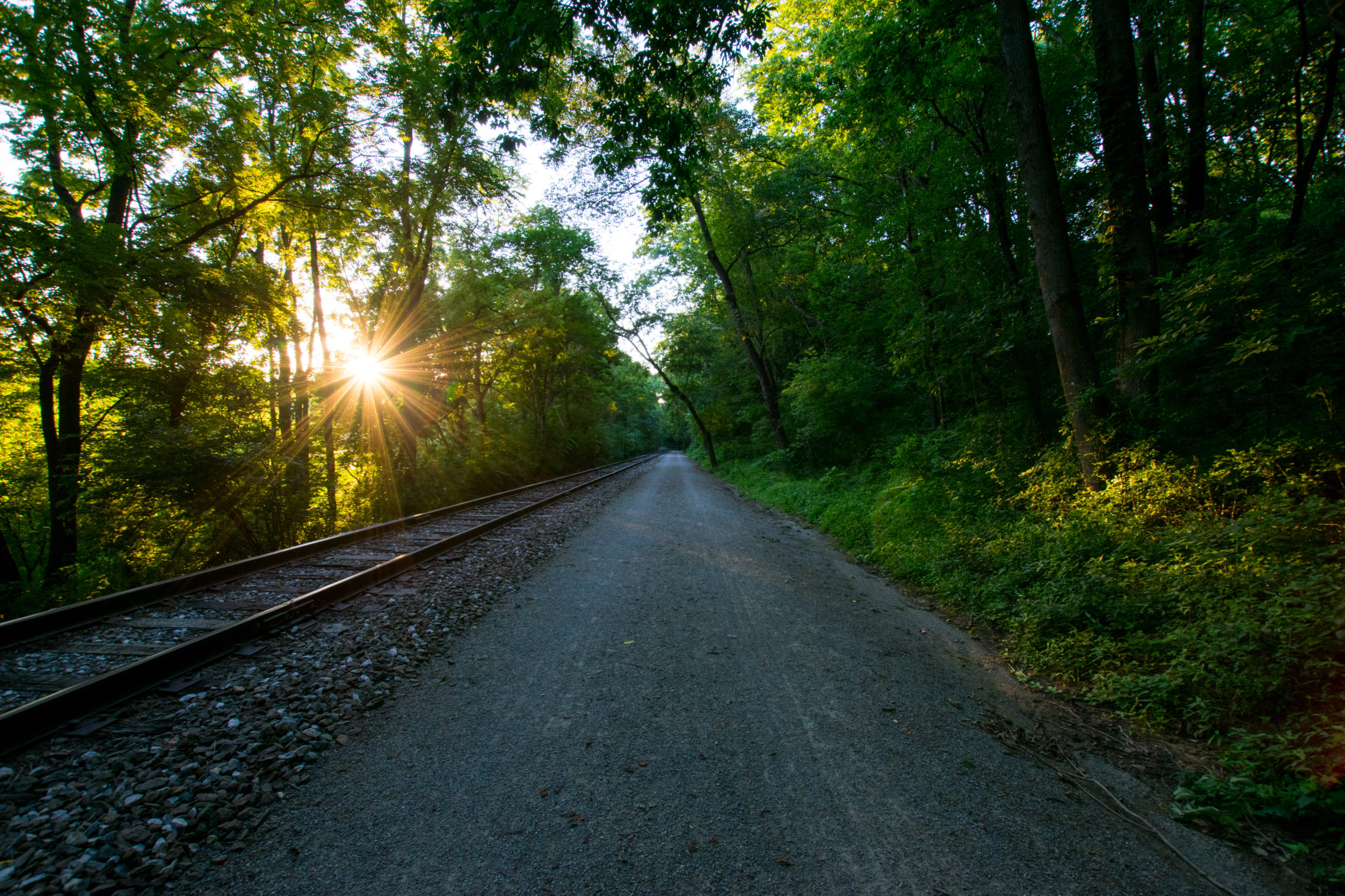 road and train tracks going through wooded area